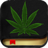 Marijuana Handbook - The Ultimate Medical Cannabis Guide With The Best of Edible, Ganja Strains, Weed Facts, Bud Slang and More!