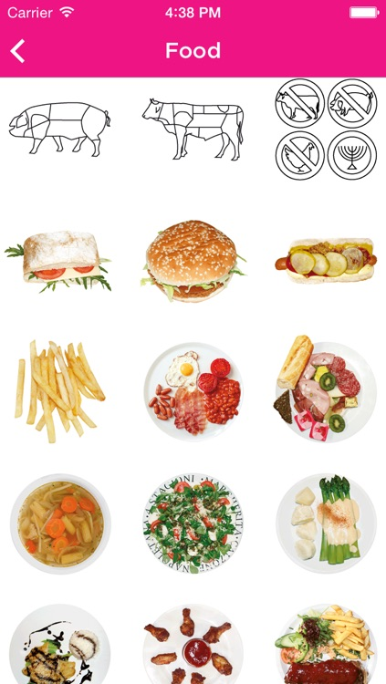 ICOON global picture dictionary screenshot-4