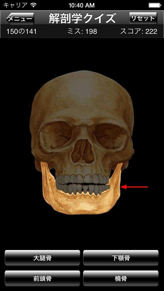 解剖学クイズ screenshot1