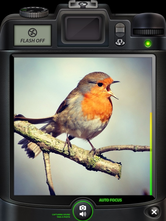 Camera SX Pro for iPad : Photo with Sound screenshot-3