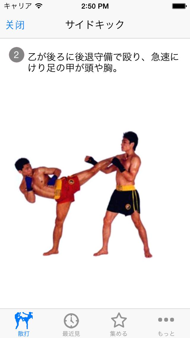 散打 武術散打スクール(ライブデモグラフィック映像)のおすすめ画像3