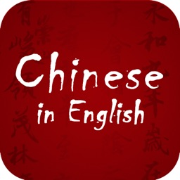 Speak Chinese in English for Fun