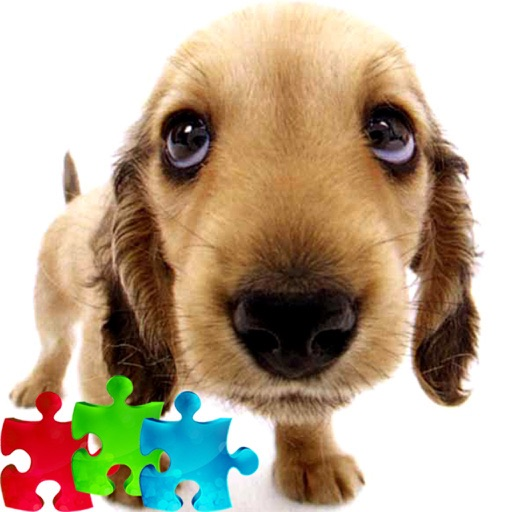 2000+ Cute Puppy Jigsaw Puzzle - Free