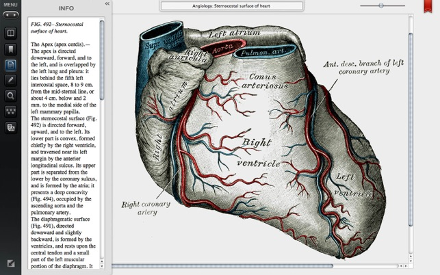 Gray\'s Anatomy Premium Edition on the Mac App Store