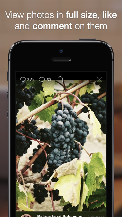 Colorbay: Photo Discovery, Redefined screenshot-3