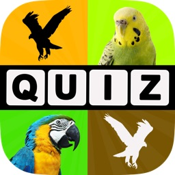 Allo! Guess the Bird Type Trivia - Bird Watching Photo Quiz