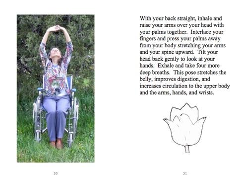 wheelchair yogajerri lincoln on apple books