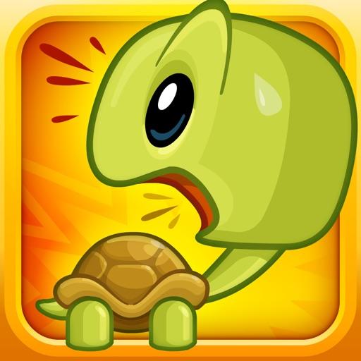 Turtles, Huh? HD