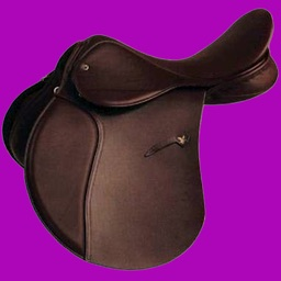 Physical Horse 2 - Equestrian Horsemanship Reference App