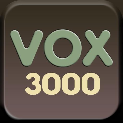 Vox 3000 Lite