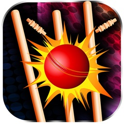 Cricket Ball Toss - Cool Throwing Sport Challenge