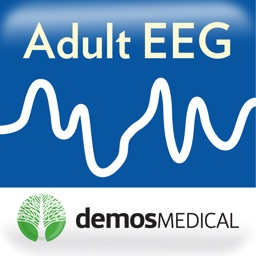 Adult EEG: An Interactive Reading Session