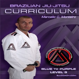 BJJ Blue to Purple Lvl.3 Curriculum Step-by-Step Jiu Jitsu System