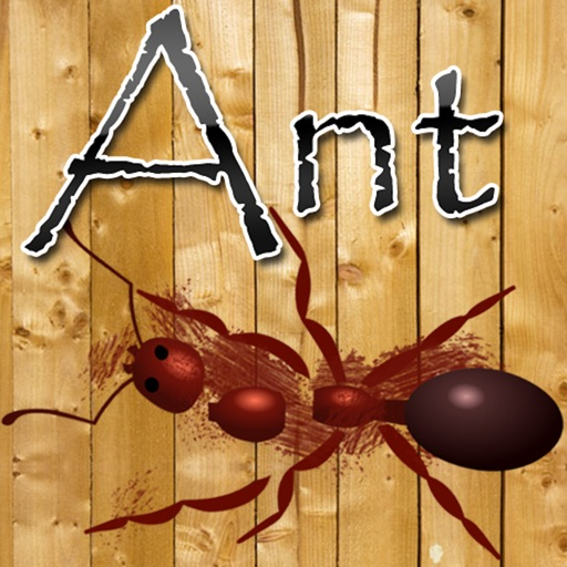 Ant Crusher Game HD Lite