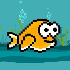 Activities of Flashy Fish! - Flashing Fish of the Sea Game