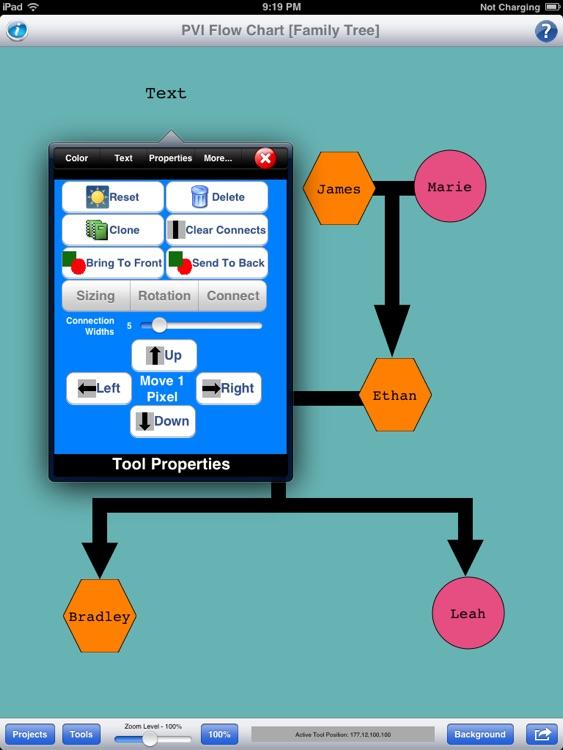 PVI - Flow Chart screenshot-3