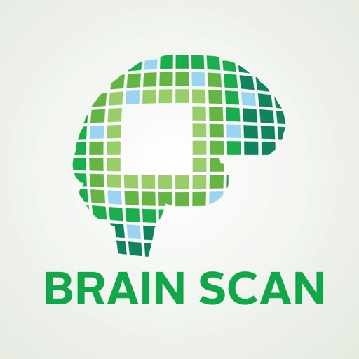 Wright State Brain Scan