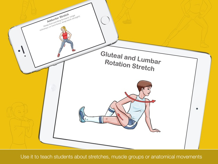 Stretch It HD - Stretching, Warm Up & Cool Down Task Cards