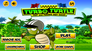 Turbo Turtle : Fast Running Indy Racer