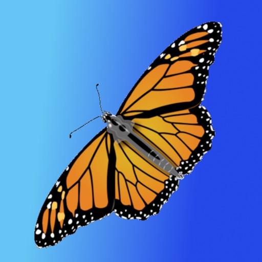 ButterfliesLite