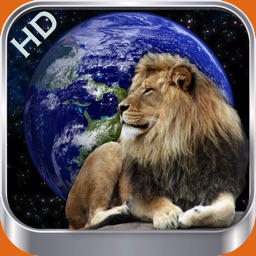 Animal Wonders of the World