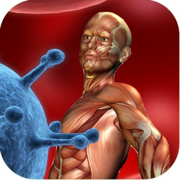 3D Visual Muscle Trigger Points