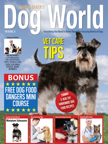 Screenshot of Sharda Bakers Dog World Magazine - Everything you need to know about the amazing world of dogs.