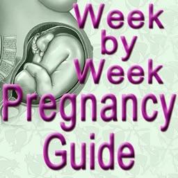 Pregnancy Week BY Week Lite