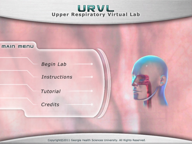Upper Respiratory Virtual Lab screenshot-0