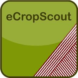 eCropScout