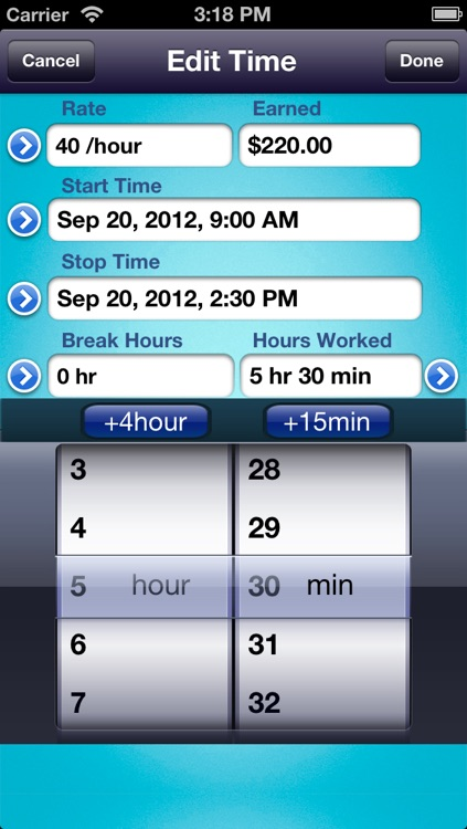 HoursWiz Pro - Personal hours keeper, time tracker & timesheet manager screenshot-3