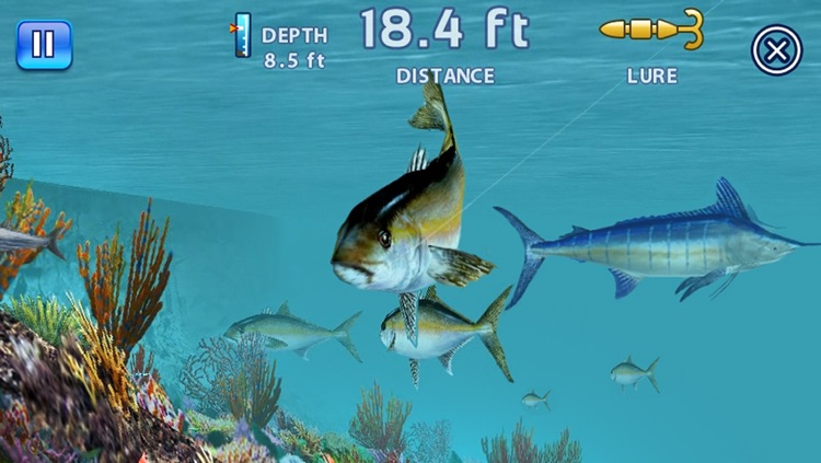 Fishing Kings Free+ screenshot-3