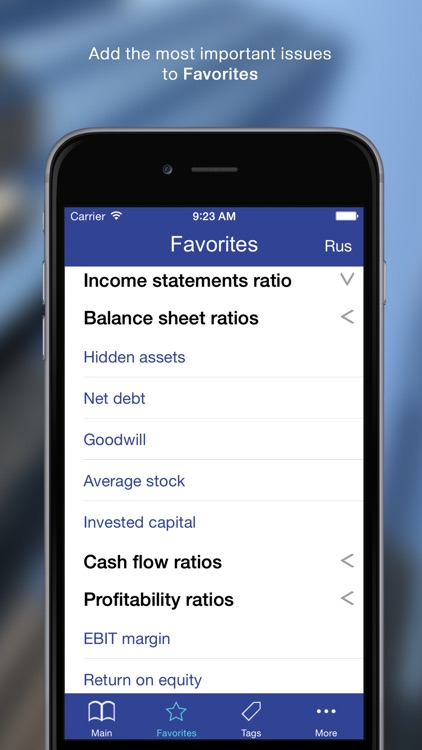 100 Finance Ratios for iPhone
