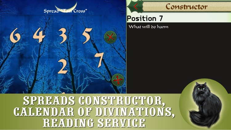 Lenormand readings - FREE cards fortunetelling and divinations app for prediction screenshot-4