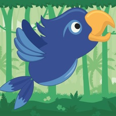 Activities of Hungry Parrot Bird
