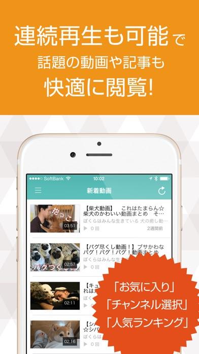 いぬ犬動画まとめ DOG TUBEスクリーンショット4