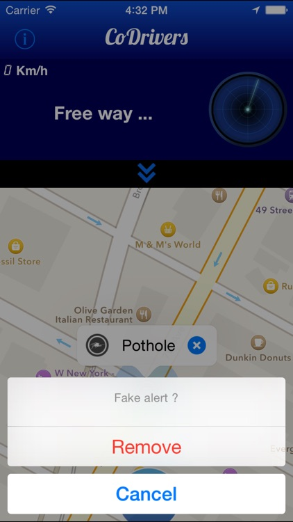 CoDrivers - GPS Driving Assistant screenshot-3