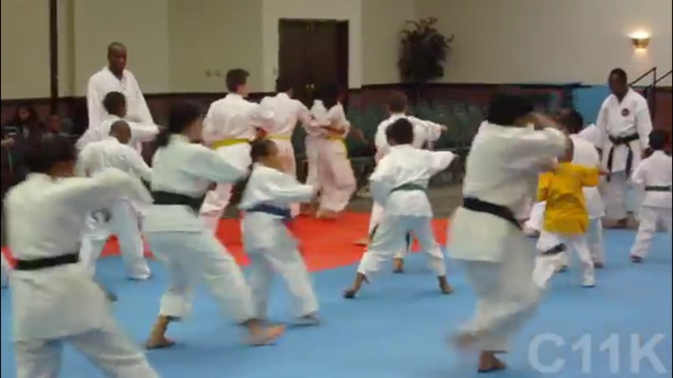 Karate For Children screenshot-3