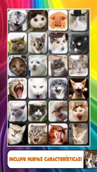 Ruidos talk Gato y gatito maúlla sonidosCaptura de pantalla de1