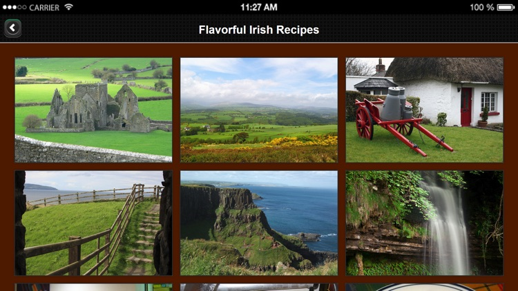 Irish Recipes from Flavorful Apps® screenshot-3