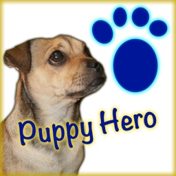 Puppy Hero: The Favorite Adventures of a Pug in Puppy Land