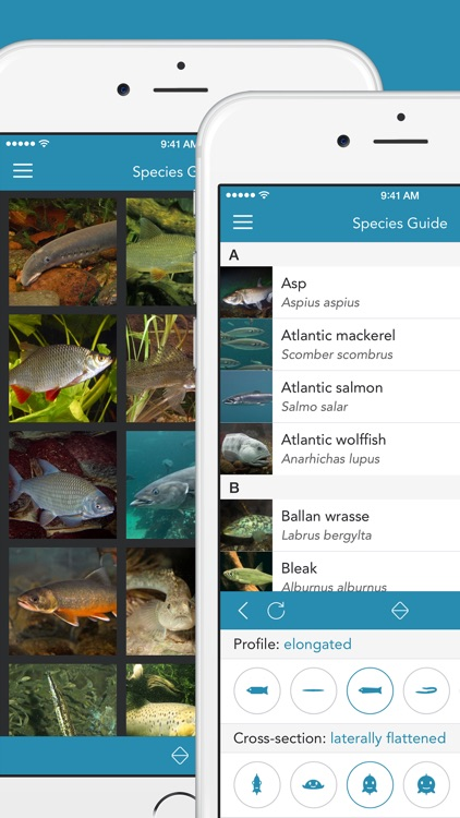 Fishes 2 PRO - The Field Guide to Central European Inland Waters, the Baltic Sea and the North Sea