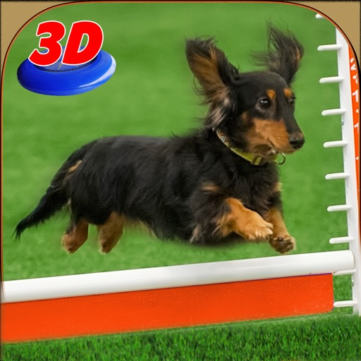 Выставка собак симулятор 3D: обучать щенков и совершать удивительные трюки