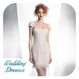 Wedding Dress Ideas - Luxury Collection for iPad