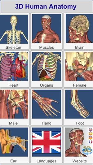 3d Anatomy On The App Store
