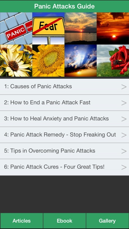 Panic Attacks Guide - Learn How to Relieve Panic Attacks Symptoms!