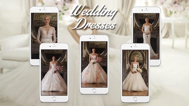 Wedding Dress & Bridal Gown Ideas