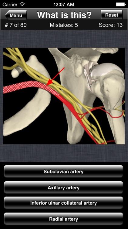 Anatomy Shoulder Quiz screenshot-3