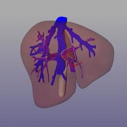 Liver Surgery AP-HP