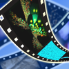 Clips FX for iMovie - Mosa Motion Graphics LLC